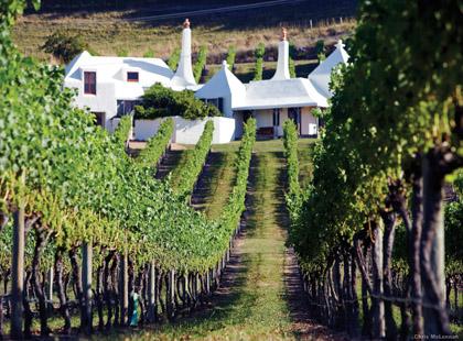1922_1_Classic_Wine_Trail_vineyard.jpg