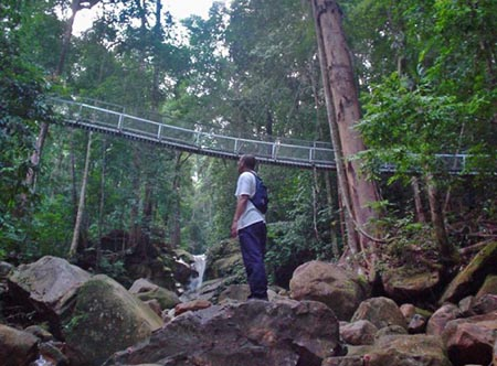 Damai Beach Resort - Jungle Trekking