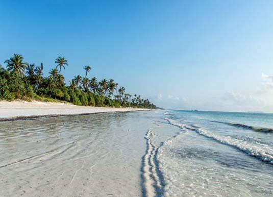 Highlights of Tanzania Privately Escorted Tour & Zanzibar Holidays