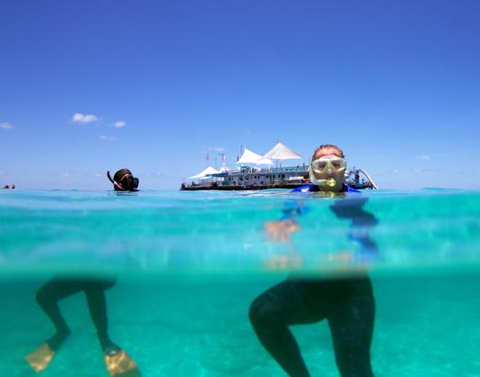 Great_Barrier_Reef_Snorkelling.jpg