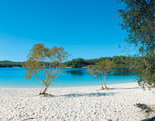 Fraser_Island_Lake_McKenzie.jpg