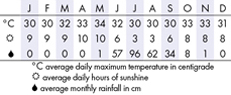 Mumbai Climate Chart