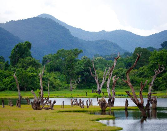 Gal Oya view