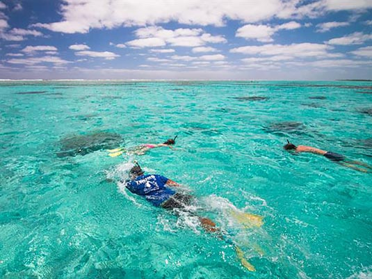 Snorkelling Safari (inc lunch) excursion