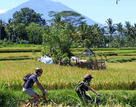 Eco Cycling Bali excursion