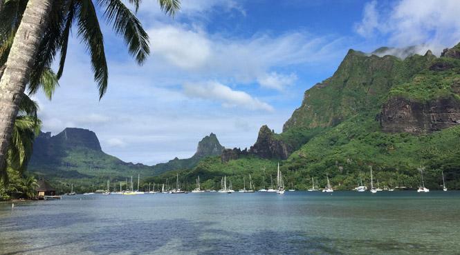Tahiti,_Cooks_Bay,_Moorea_Island,.jpg