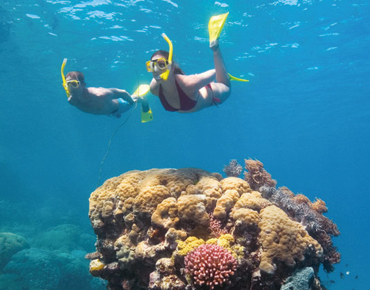 Full Day Reef Exploration – Snorkelling excursion