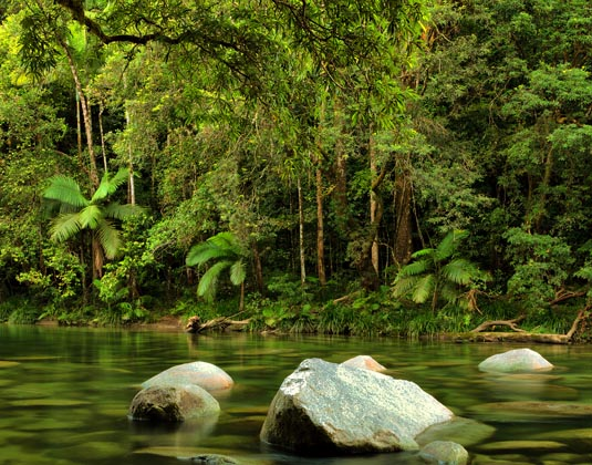 Mossman River, Daintree National Park