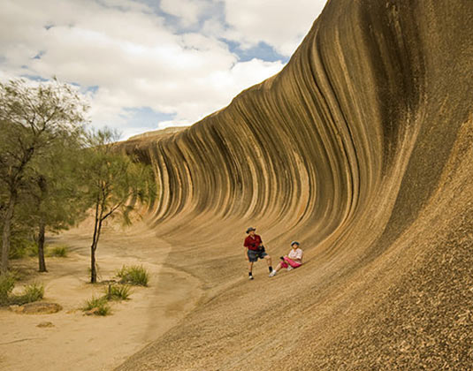 Wave Rock, York & Wildflowers (inc lunch) excursion