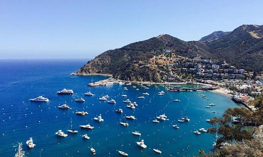 Catalina Island - a Day in Paradise excursion
