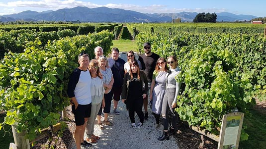 Marlborough Wine Tour excursion