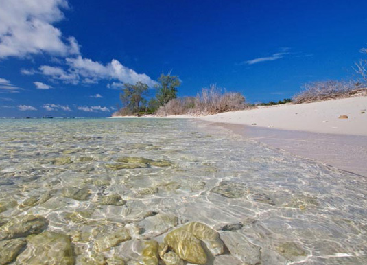 Low tide on the reefward coast of Bird Island Seychelles
