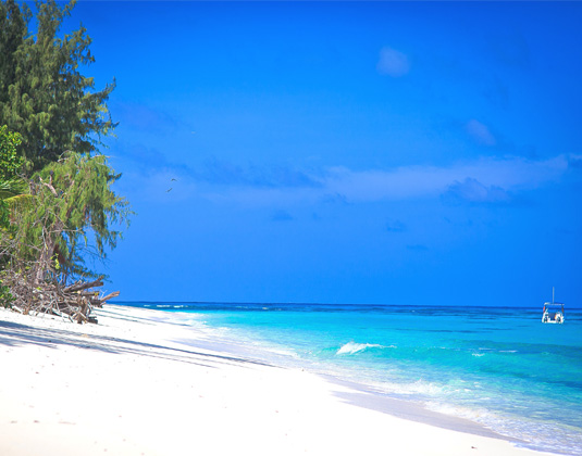 Denis_Island_-_Beach.jpg