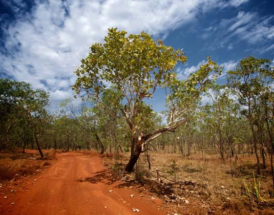 Kakadu_National_view.jpg