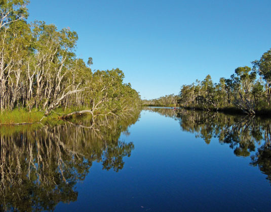Noosa Everglades Eco Cruise with lunch excursion