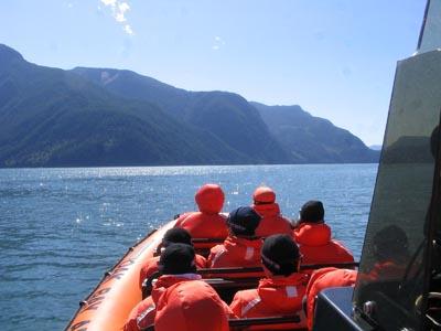 Campbell River Wildlife Adventure excursion