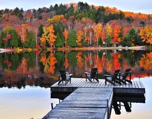 Alonquin_Park_Algonquin_Provincial_Park.jpg