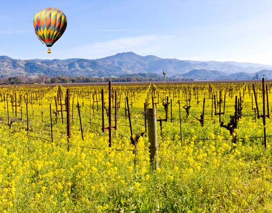 California Wine Country Holidays