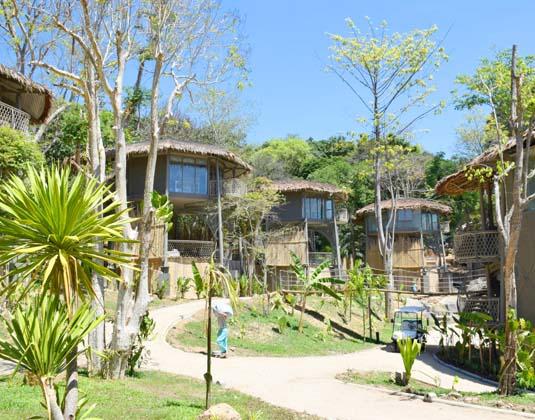 Tree_House_Villa_-_Villas_and_gardens.jpg