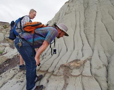 Discover Dinosaur Provincial Park excursion