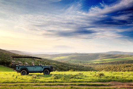 Bellevue-Forest-Reserve-Elephants-Lodge_safari-vehicle.jpg