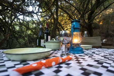 Bellevue-Forest-Reserve-Stargazer-Camp_outdoor-dining.jpg