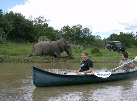 Amakhala-Volunteers-on-river-presented-by-Safari-Lodge.jpg