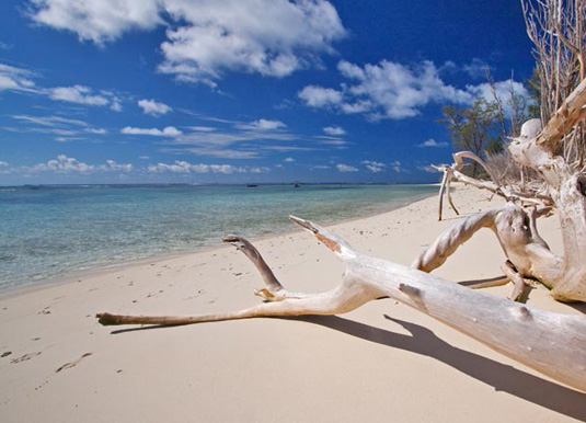Low-tide-over-the-reef-flat.jpg