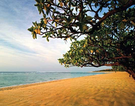 Grand Hyatt Bali - Beach