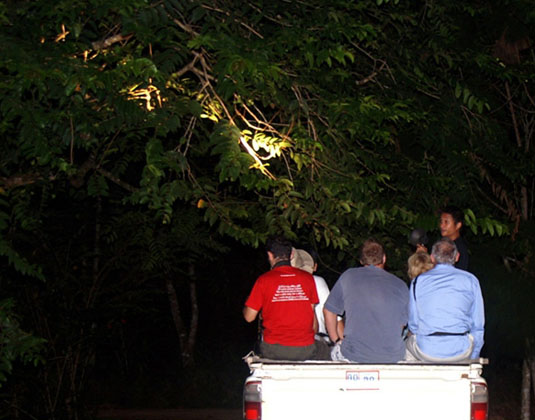 Tabin Wildlife Night Safari