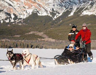 Dogsledding Experience excursion