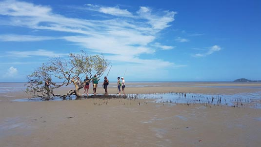 Daintree Dreaming (inc lunch) excursion