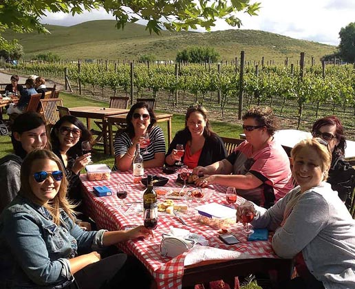 Classic Afternoon Wine Tour excursion