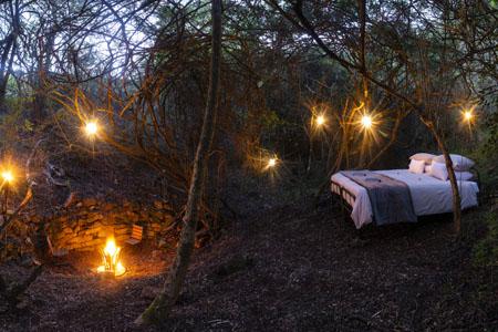 Bellevue-Forest-Reserve-Stargazer-Camp_ooutdoor-sleeping.jpg