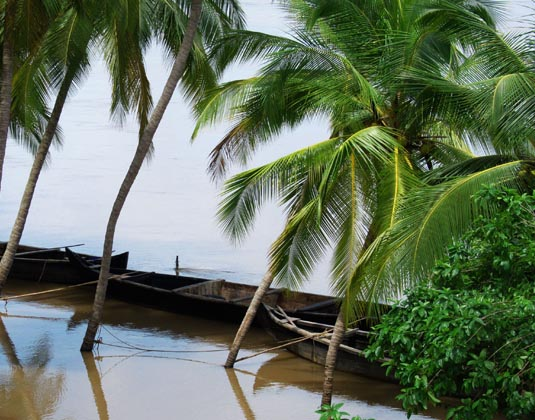 Kerala boats on River
