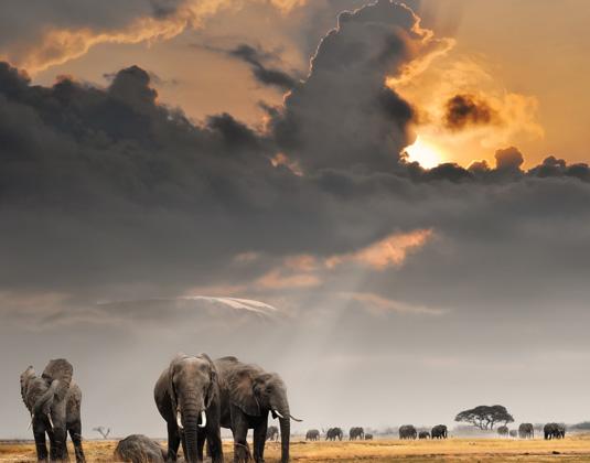 Tanzania  Sunset