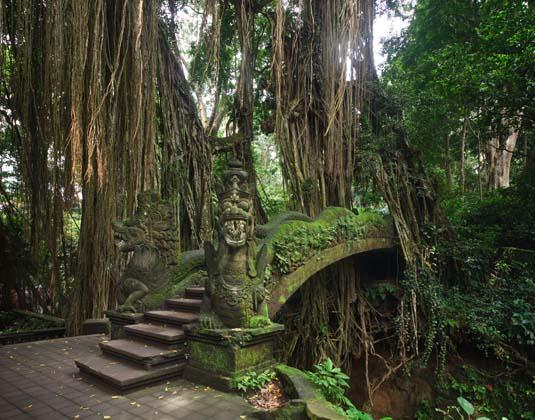 Ubud's Monkey Forest Sanctuary