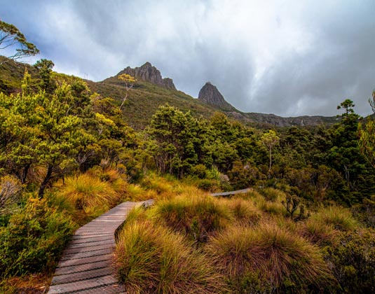 Walking_Trail,_Cradle_Mountain_Cradle_Mountain_National_Park_MAIN_.jpg