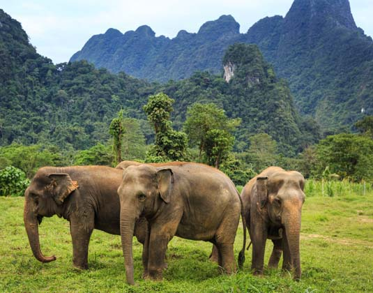 Phuket, Elephant Hills and Khao Lak Holidays