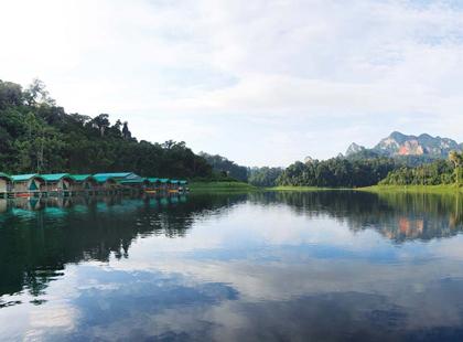 Rainforest_Camp.jpg