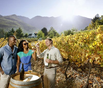 Winelands & Beyond