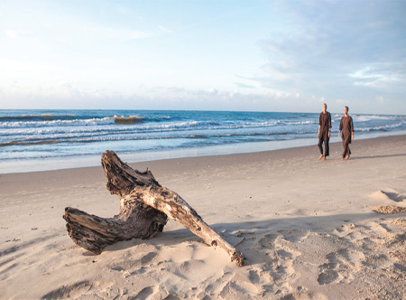 Alma_Oasis_-_Beach.jpg