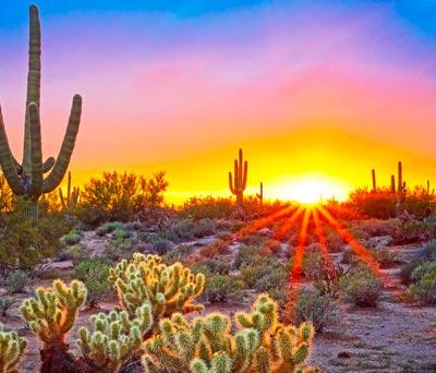 Phoenix, Scottsdale & Rest of The West