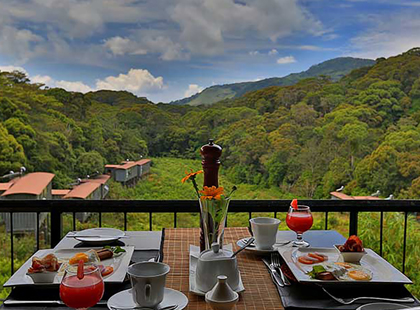 Rainforest Eco Lodge Holidays