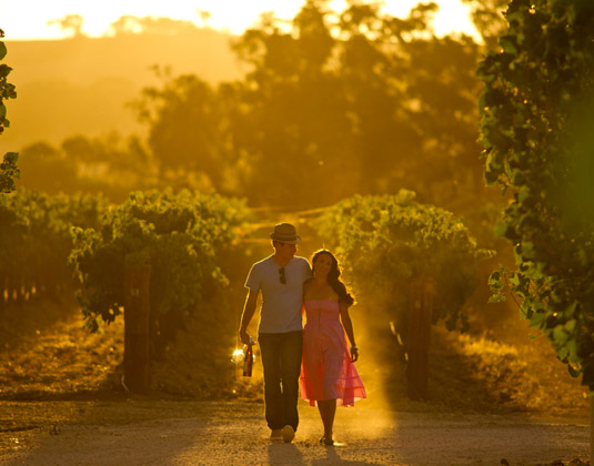 Wine_and_Outback_Experience_MAIN_Couple_in_vineyards,_Clare_Valley.jpg