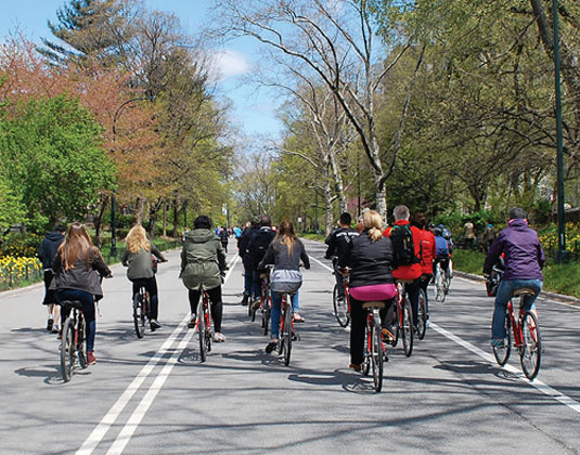 Central Park Bike Tour excursion
