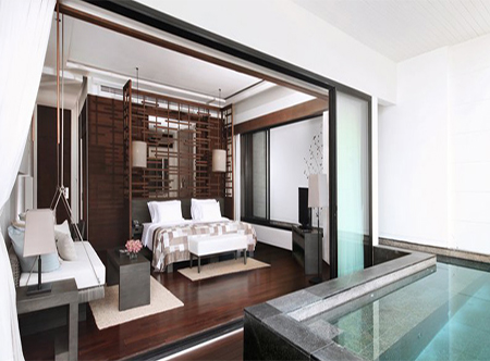 Cape_Nidhra_-_Deluxe_Sky_Pool_Suite_copy.jpg