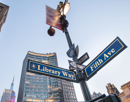 Library Way street sign NY