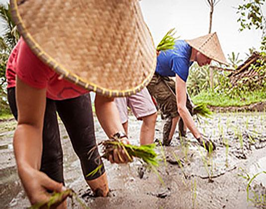 Balinese Village Adventure excursion